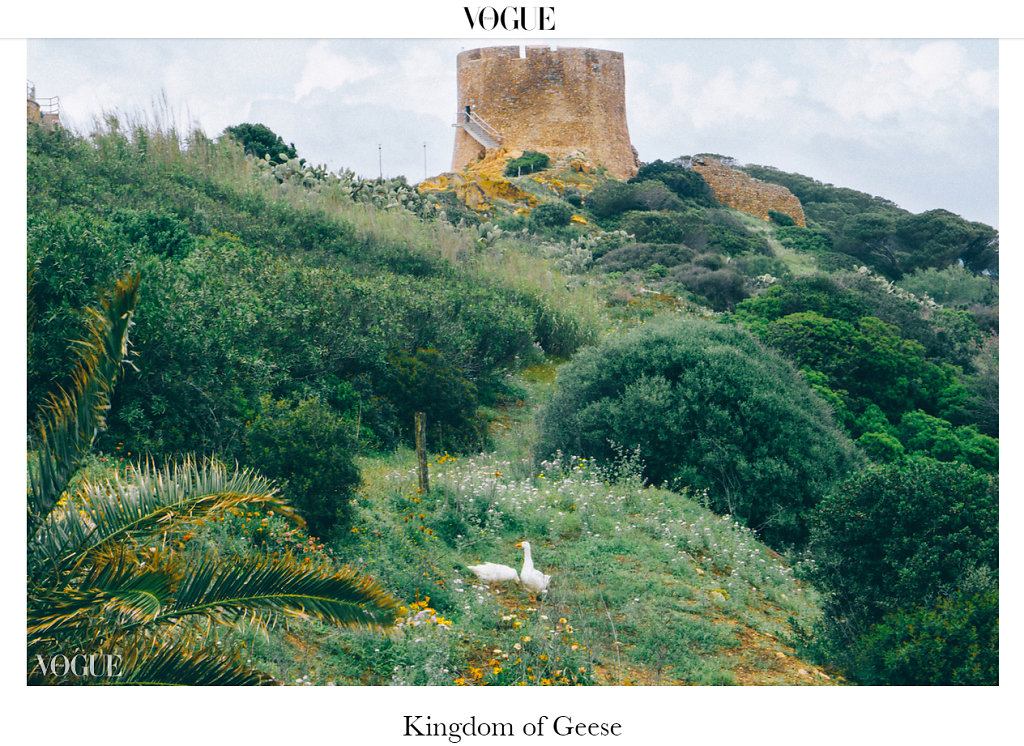 VOGUE ITALIA- KINGDOM OF GEESE